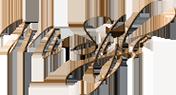 相模原市JR淵野辺駅北口無料送迎、駐車場有り 相模原のネイルサロンMi-Style[ミースタイル]